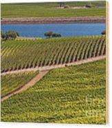 Vineyard On A Lake Wood Print