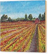 Vineyard On Dry Creek Road Wood Print