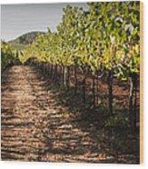 Vineyard Soil Of Sonoma Wood Print