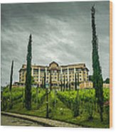 Vineyards And Chateau Wood Print