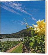 Vineyard's Companion Rose Wood Print