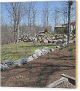 Vineyards In Va - 12121 Wood Print