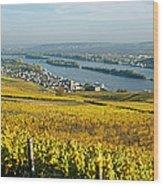 Vineyards Near A Town, Rudesheim Wood Print