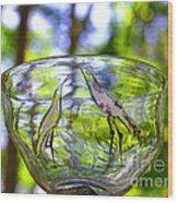 Vinsanchi Glass Art-4 Wood Print by Vin Kitayama