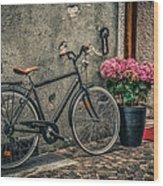 Vintage Bicycle Wood Print