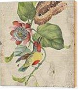 Vintage Bird Study-b Wood Print