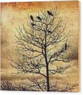 Vintage Blackbirds On A Winter Tree Wood Print