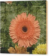 Vintage Blooms Wood Print