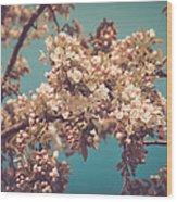 Vintage Blossom Wood Print