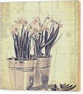 Vintage Daffodils Wood Print