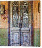 vintage door in Hico TX Wood Print by Elena Nosyreva