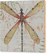 Vintage Dragonfly-jp2563 Wood Print