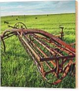 Vintage Farm Equipment I - Blue Ridge Wood Print by Dan Carmichael