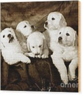 Vintage Festive Puppies Wood Print