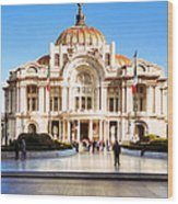 Vintage Grandame Of Mexico City Wood Print by Mark E Tisdale