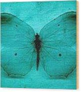 Vintage Grunge Butterfly Wood Print