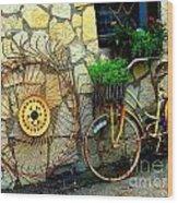 Antique Store Hay Rake And Bicycle Wood Print