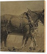 Vintage Horse Plow Wood Print