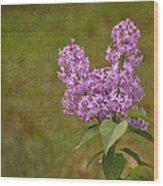 Vintage Lilac Bush Wood Print