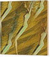 Vintage Matrix Wood Print
