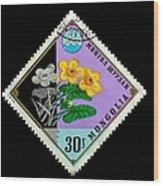 Medicinal Plants - Vintage Mongolia Stamp Wood Print