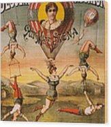 Vintage Nostalgic Poster - 8029 Wood Print