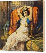 Vintage Nostalgic Poster - 8037 Wood Print