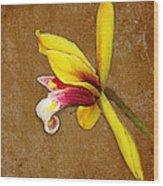 Vintage Orchid Wood Print