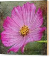 Vintage Pinc Flower Wood Print