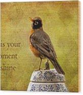 Vintage Proud Robin Wood Print