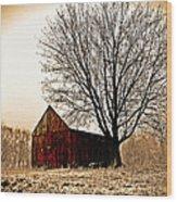 Vintage Red Wood Print