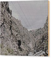 Vintage Rio Grande Royal Gorge By Lynn Bramkamp Wood Print