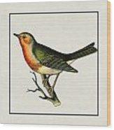 Vintage Robin Square Wood Print