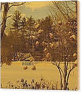 Vintage Snow Blossoms Wood Print
