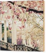 Grecian Garden Wood Print