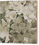 Vintage Spring Wood Print