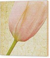Vintage Tulip Wood Print by Lesley Rigg