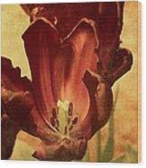 Vintage Tulips Wood Print
