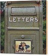 Vintage Us Mailbox II Wood Print