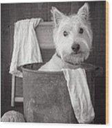 Vintage Wash Day Wood Print