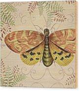 Vintage Wings-paris-c Wood Print