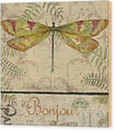 Vintage Wings-paris-e Wood Print