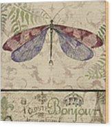 Vintage Wings-paris-f Wood Print