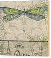 Vintage Wings-paris-g Wood Print