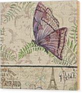 Vintage Wings-paris-i Wood Print