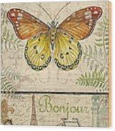 Vintage Wings-paris-l Wood Print