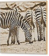 Vintage Zebras Wood Print