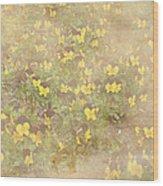 Viola Field Wood Print