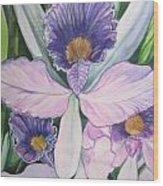 Violet Adventures Wood Print