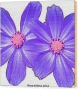Violet Asters Wood Print